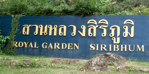 2012-11-23 Thailand Day 05, Royal Garden Siribhum, Doi Inthanon National Park   by Qsimple, Memories For The Future Photography
