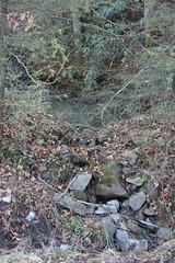 Small Red River Sediment Pond