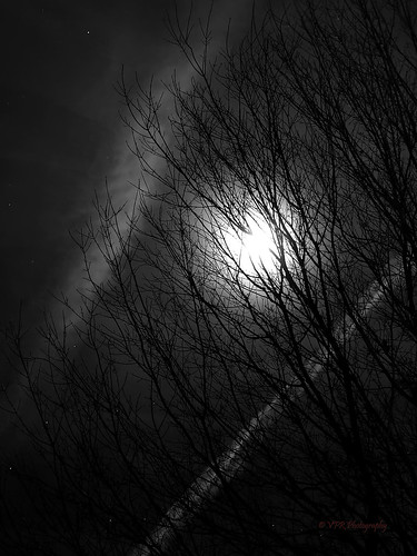 blackandwhite bw moon tennessee moonlight woodlawn montgomerycounty