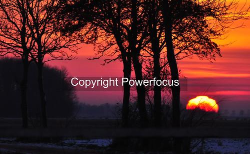 trees winter sunset sun snow ice backlight evening silhouettes henk nikond90 powerfocusfotografie