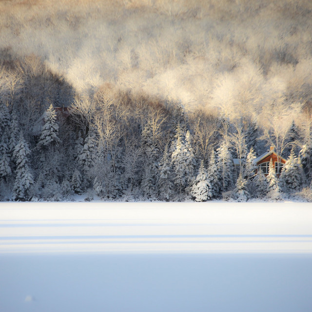 Forêt enneigé de lumière... pignon niché dans les ombres bleues... premiers jours de l'hiver...!!!