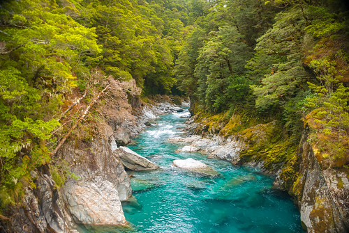 mountaspiringnationalpark otago newzealand nz kiltro bluepoolswalk nature river landscape water blue cyan green forest trees