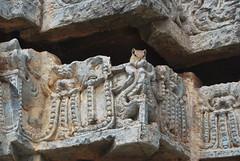 Scoiattolo al Tempio di Belur