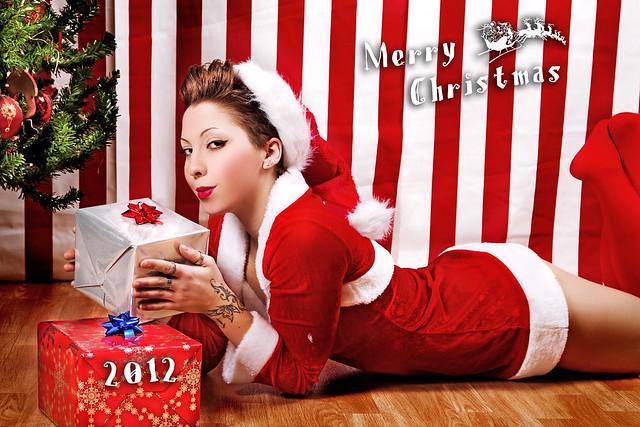 Merry Christmas 2012 (4)