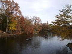 日, 2012-11-18 15:18 - Central Parkの紅葉