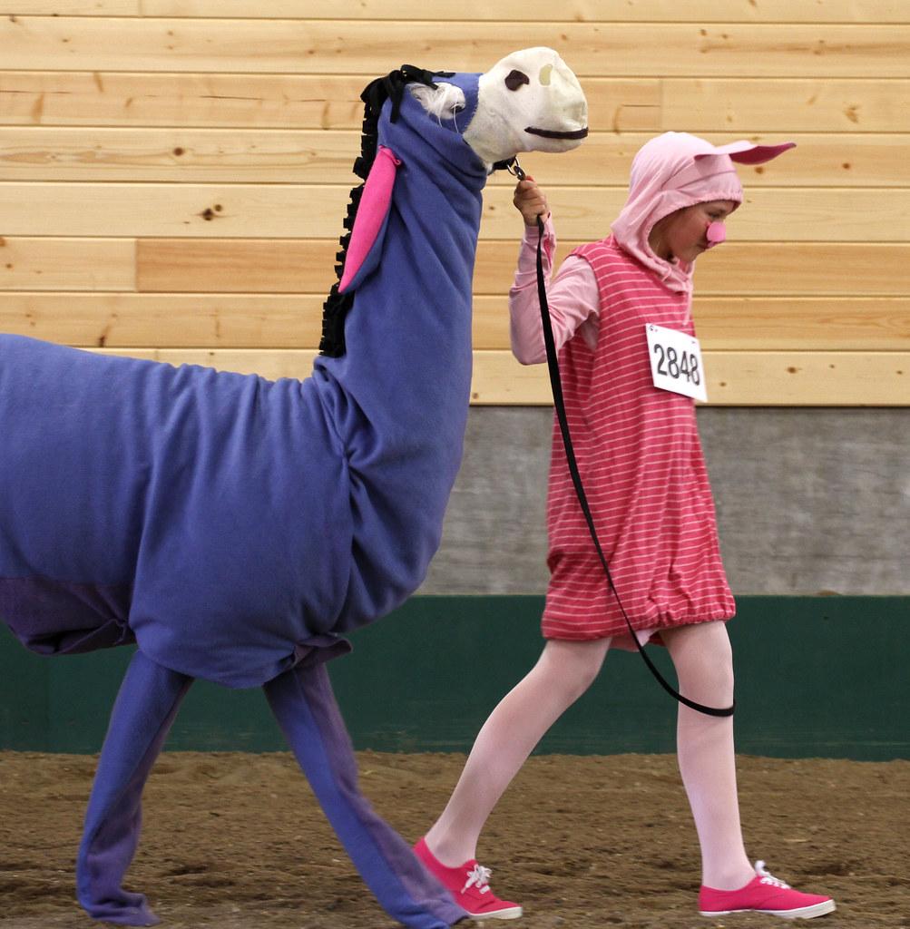 Llama costume Contest | Minnesota State Fair Llama costume c