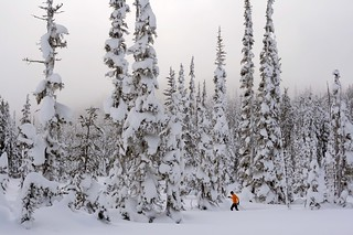 Skiing on Mount Washington | by moonstream