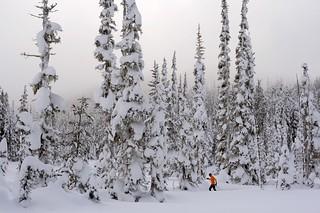 Skiing on Mount Washington | by moonstream