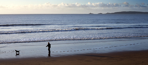 new morning sea dog man beach swansea sunrise walking 1 bay early sand day january footsteps years 2013