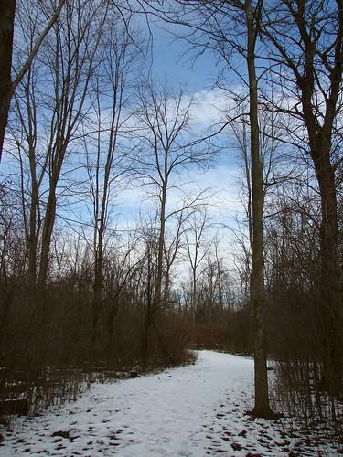 park michigan trail naturetrail downriver huronclintonmetroparks lakeeriemetropark trappersrunnaturetrail