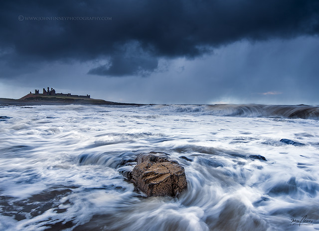 Wild Dunstanburgh