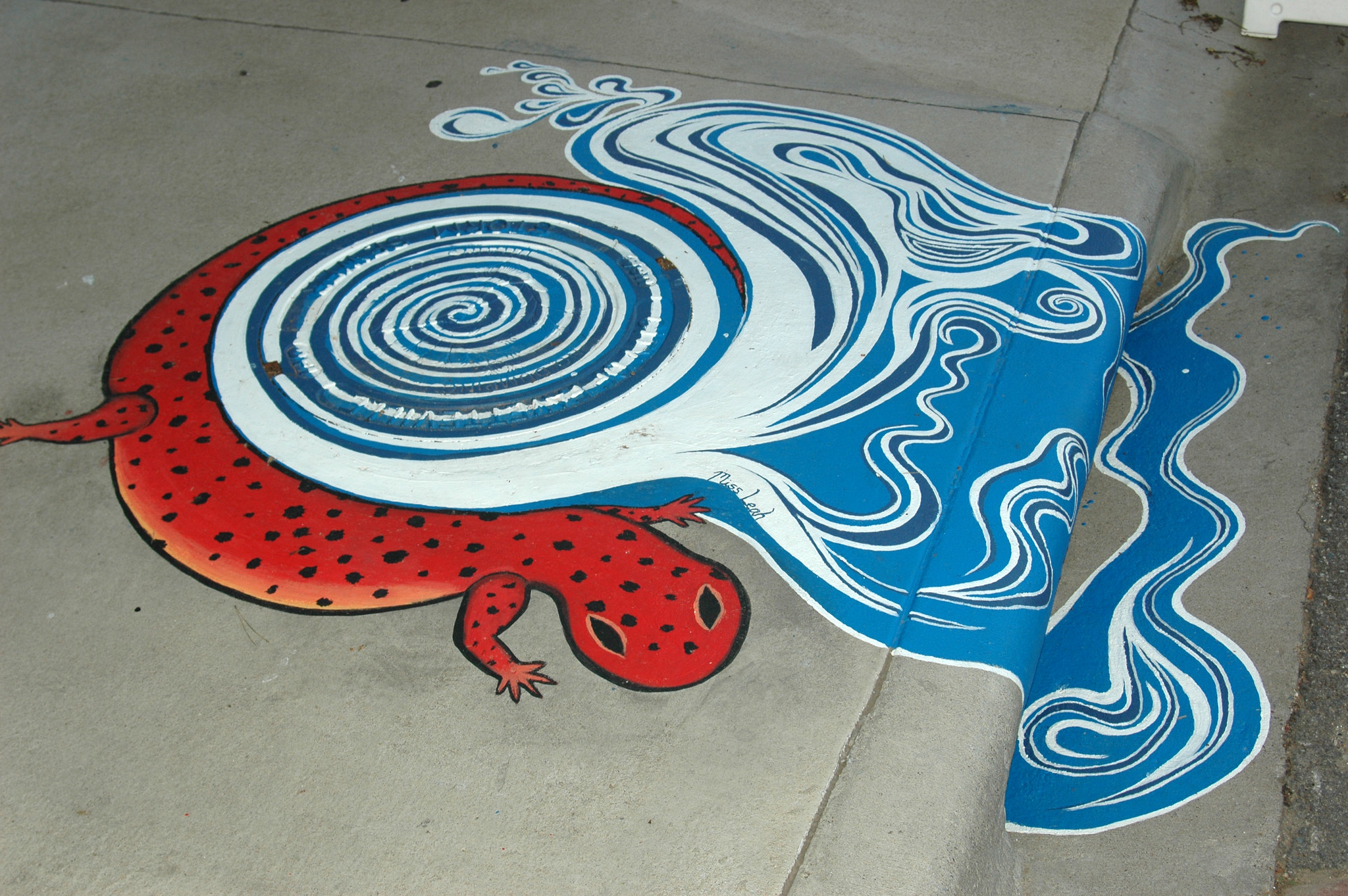 Picture of upstream art on a storm drain showing a cave salamander