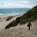 Nueva Zelanda, Isla Sur 30
