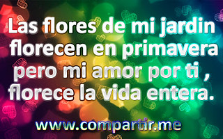 Frases Bonitas Para Dedicar A Tu Amor Descarga Esta Imagen