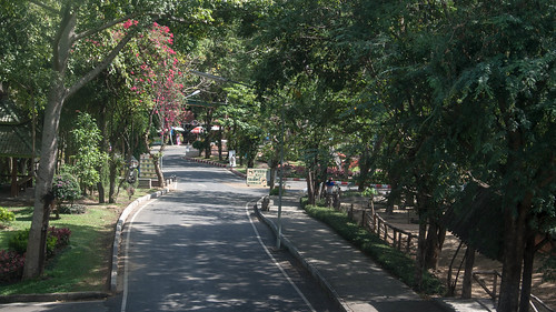 2012-11-21 Thailand Day 03, Chiang Mai Zoo | by Qsimple, Memories For The Future Photography