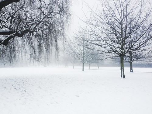 Snow Day 2 | by AwayWeGo210