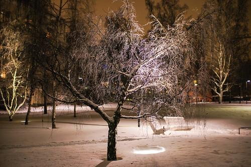 park winter snow suomi finland evening twilight ilta vaasa vasa ostrobothnia hämärä vasaostrobothniafinland koivupuisto