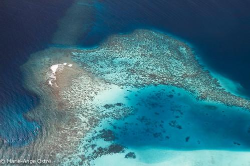 island indianocean feed maldives archipelago atoll île archipel océanindien ©2013marieangeostré