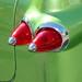 10-07-06 Temecula Fall Car Show