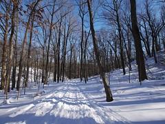 日, 2013-02-10 14:16 - Rockfeller Park Preserve