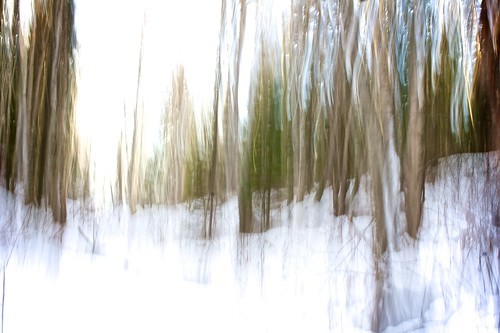 winter snow canada cold water creek forest landscape movement scenery slow britishcolumbia varsity shutter princegeorge intentional varsitycreek