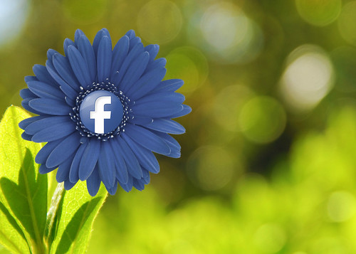 Facebook Flower | by mkhmarketing