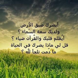 #صلاة_الوتر #جنة_القلب اسعدكم الله في الدنيا و الاخره | Flickr