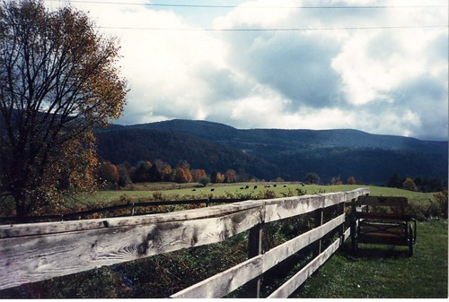 blue vermont view farm goose east randolph