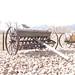 Seed drill - Eisenberg
