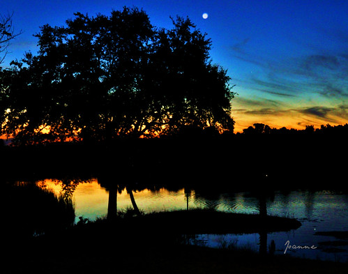 sunset river florida halls sunsets homosassa amazingsunset westcentral westcentralflorida amazingsunsets hallsriver