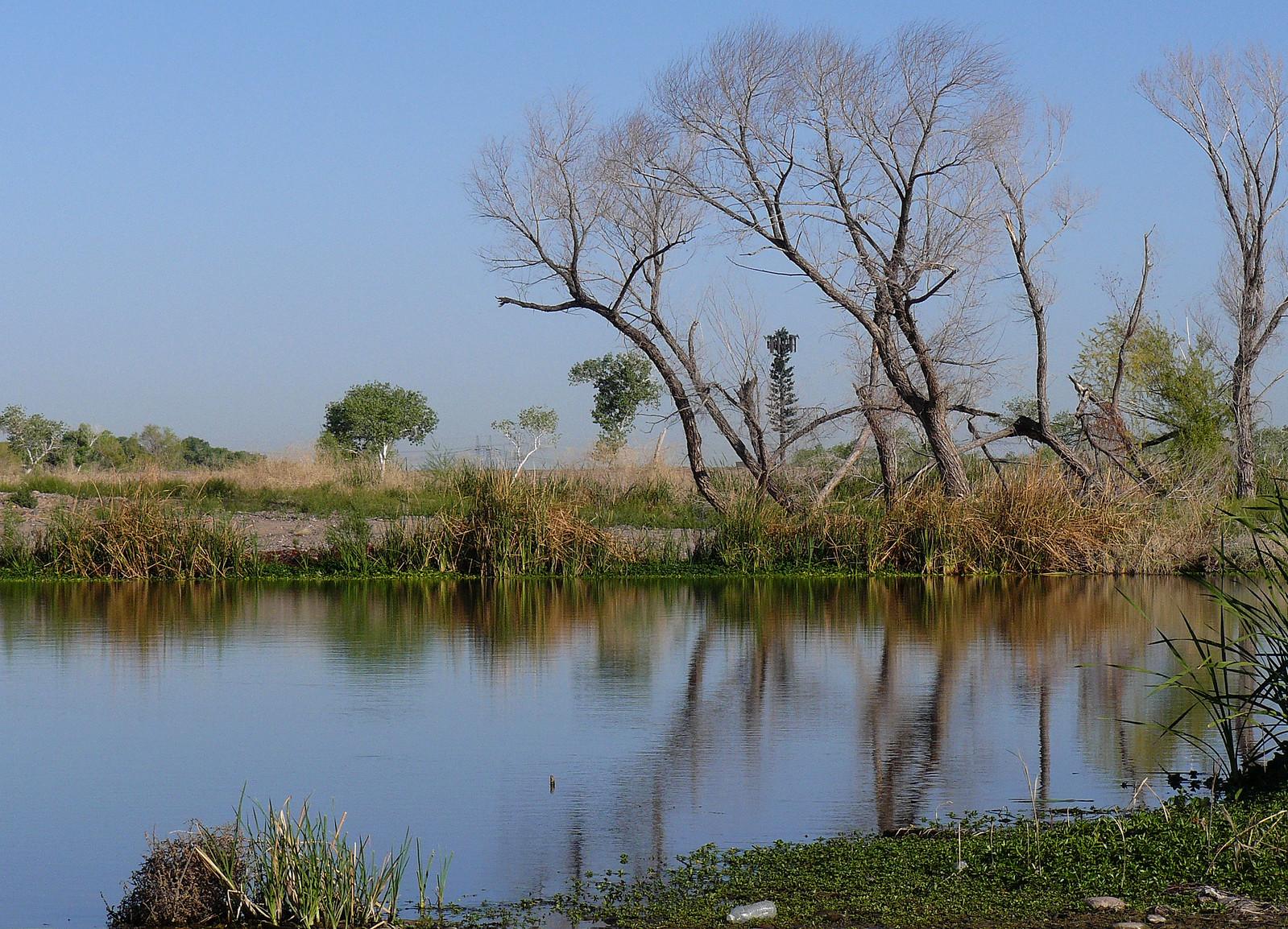 Tres Rios Wetlands, Arizona