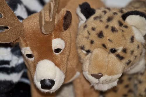 Stuffed Animals & Imagination