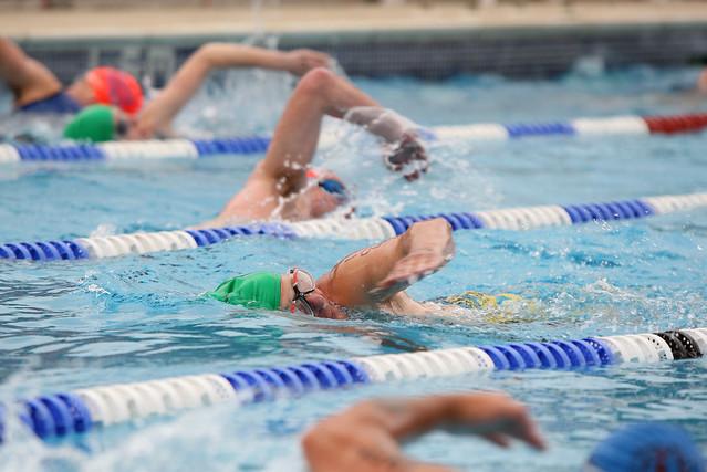 Swimmers Arundel Lido
