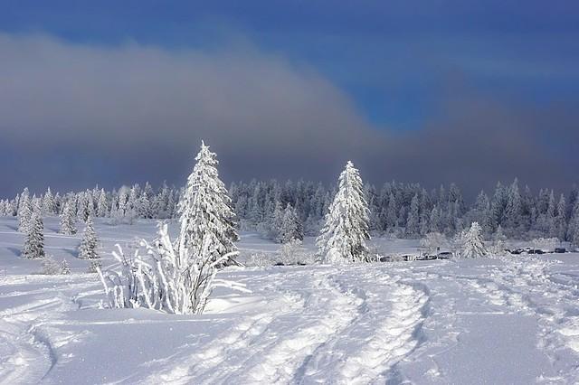 Winter in Alsace -3-