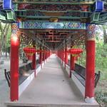 Kunming, cité de l'éternel printemps