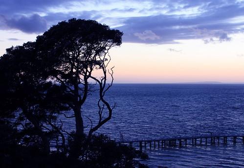 port sunrise australia victoria almost phillip queenscliff 1march13