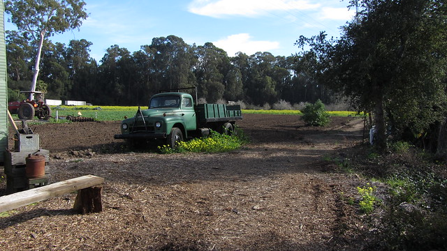 IMG_7120 Goleta Ellwood organic farm stand Langlo Ranch road truck