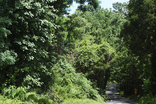 Mattapany Road, earliest road in Maryland, St. Mary's City