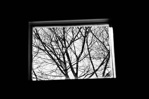 window blackwhite
