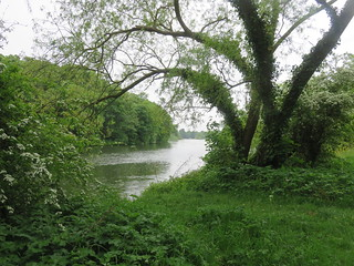 Thames Path - Windsor to Maidenhead | by Andrew Grantham
