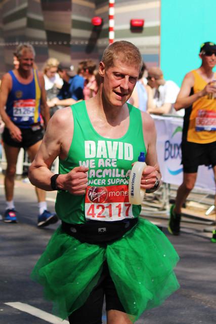 David 42117