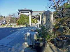 2013/01/12 (土) - 13:46 - 本龍寺