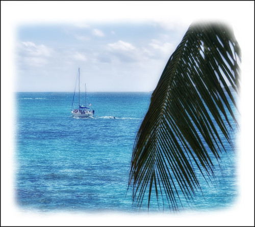 Sailboat Speeding Pass A Palm Frond | by Simon__X