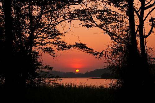 trees sunset sky sun lake nature silhouette night cloudy foliage bombay orangesky mumbai eveningsky iitb iitbombay powailake treessilhouettes silhouetteoftreesaroundsettingsun