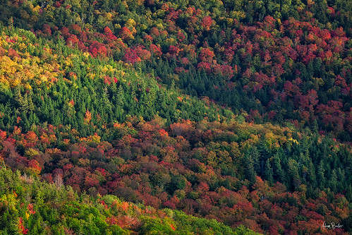 statepark autumn sunset lake ny forest canon mix hiking foliage layers adirondack placid adambaker 70200mm28l 5dmkii