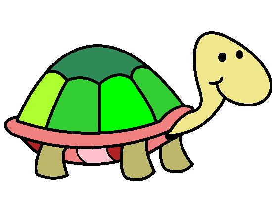 Kaplumbaga Boyama Uzun Omurleri Ile Dikkat Ceken Acliga Da Flickr