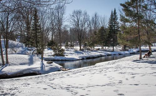winter snow bench benchmonday