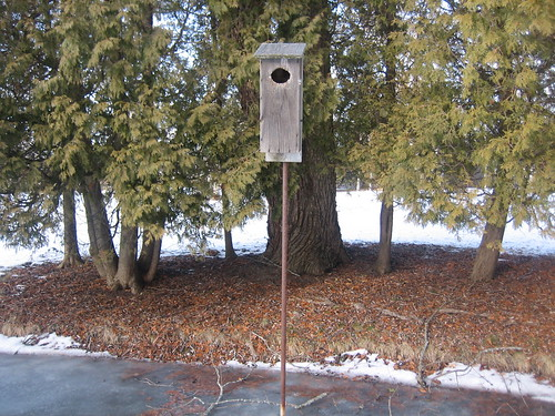 Wood Duck Nest Boxes
