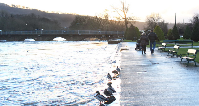 The River Wharfe in flood at Otley