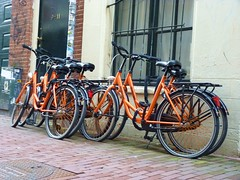 Orangebikes - 3 February 2013